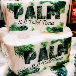 PALM Multifold paper Towel...
